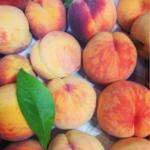Organic Okanagan peaches